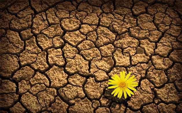 resilienza clima