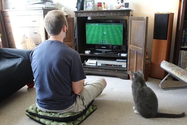 Io odio il calcio e i videogiochi di calcio
