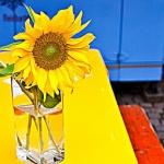 idee per decorare la tavola d'estate