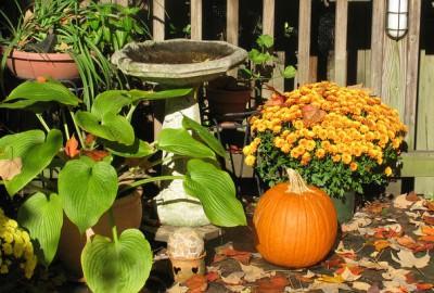 orti di autunno