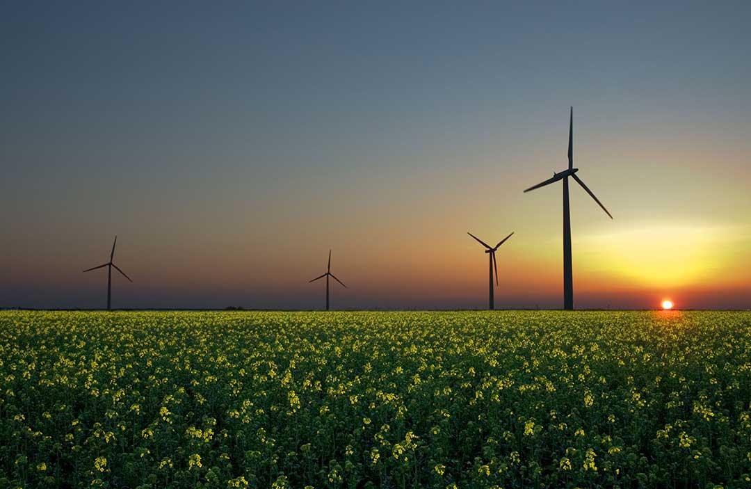 Perché l'Agenzia internazionale per l'energia (IEA) sottostima le rinnovabili?