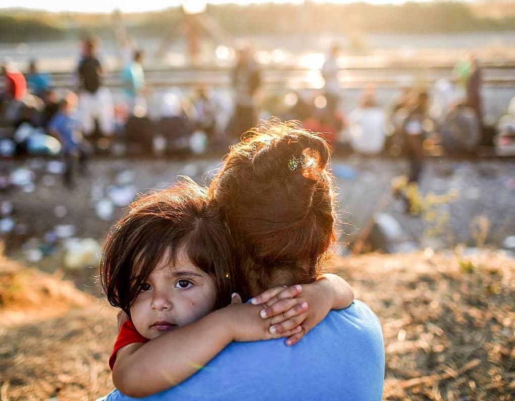 Quanti migranti sono arrivati nel 2016 for Quanti sono i senatori in italia