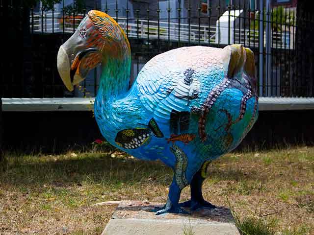 Al Museo di Scienza Naturale di Port Louis potrete incontrare il Dodo