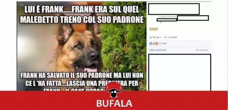 bufale in rete
