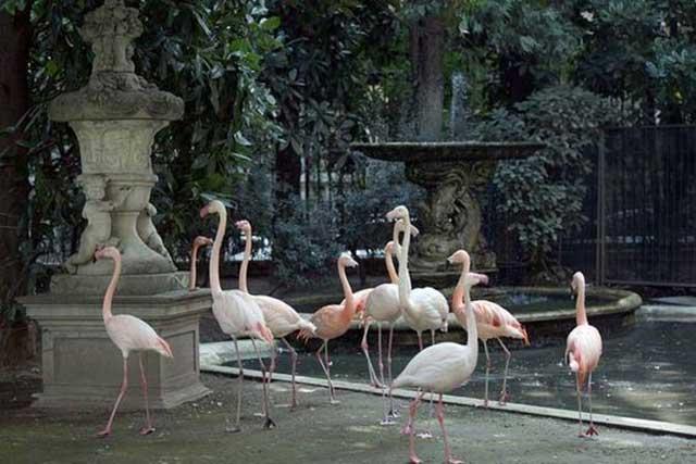 posti più romantici di Milano Villa Invernizzi
