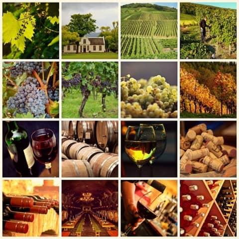 strade del vino nel sud est francia