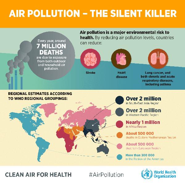 morti per inquinamento